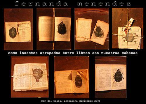 Como insectos atrapados entre libros son nuestra cabezas, Cocina, Fernanda Menendez