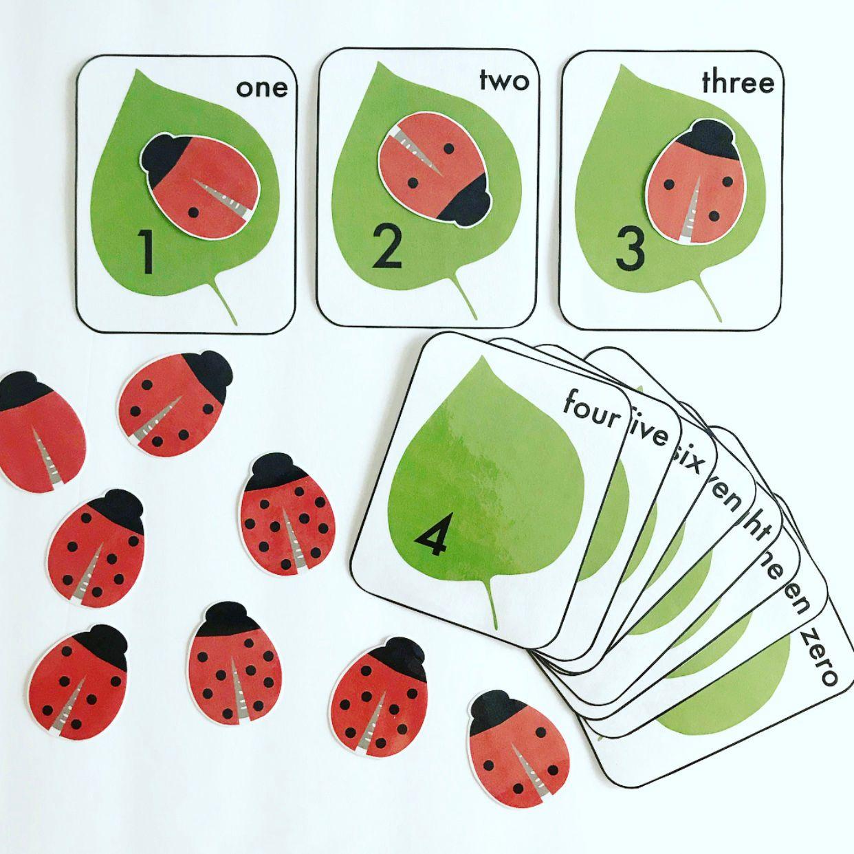 Ladybug Math With Images