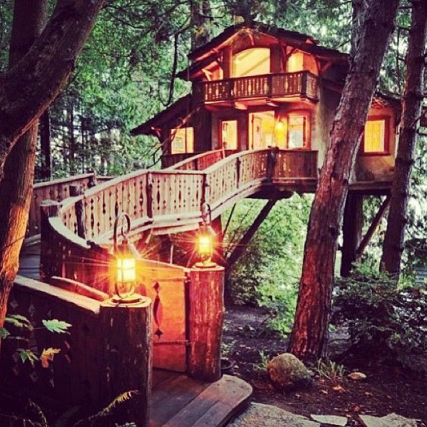 Would you live in the trees
