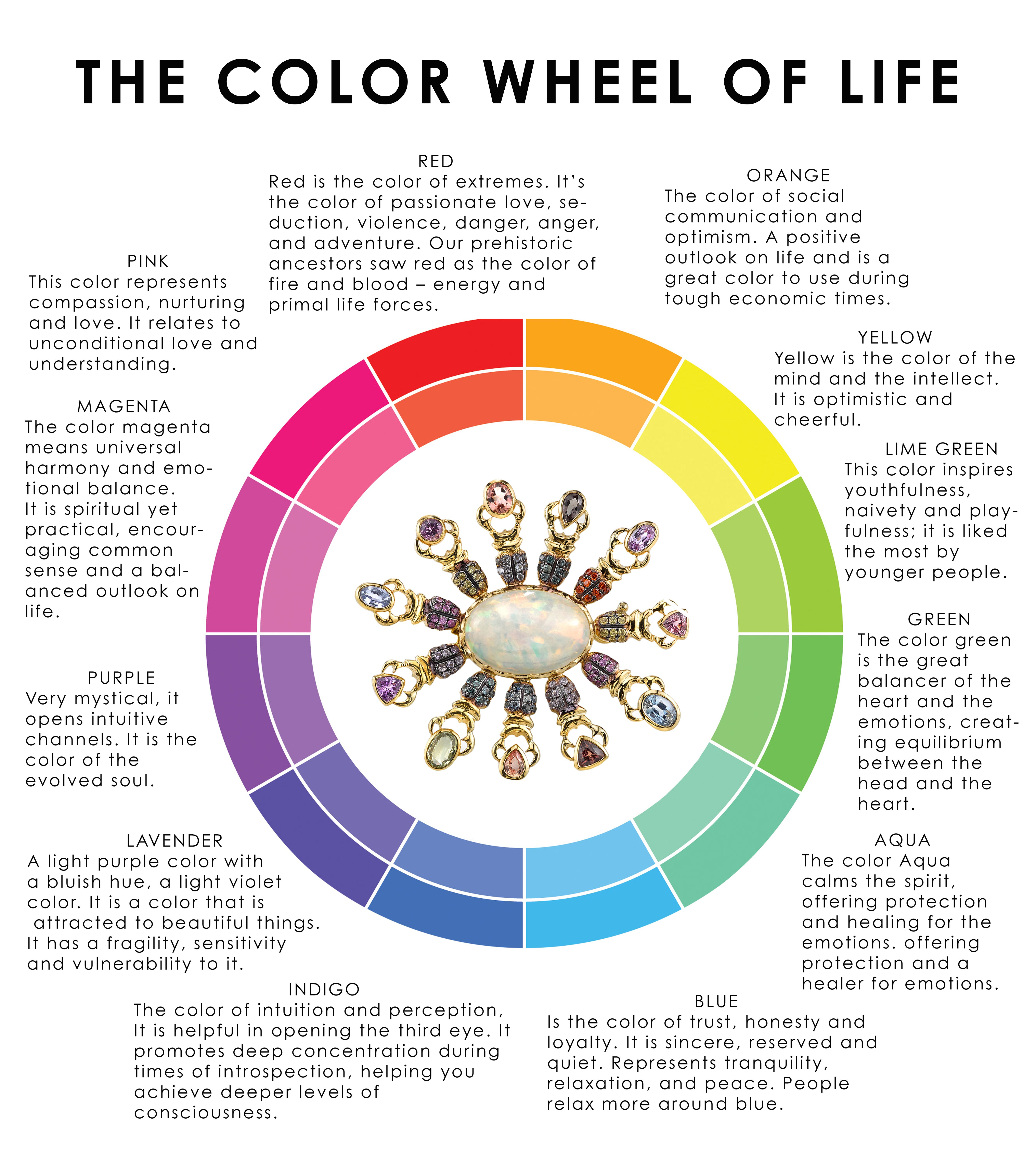 The Color Wheel Of Life