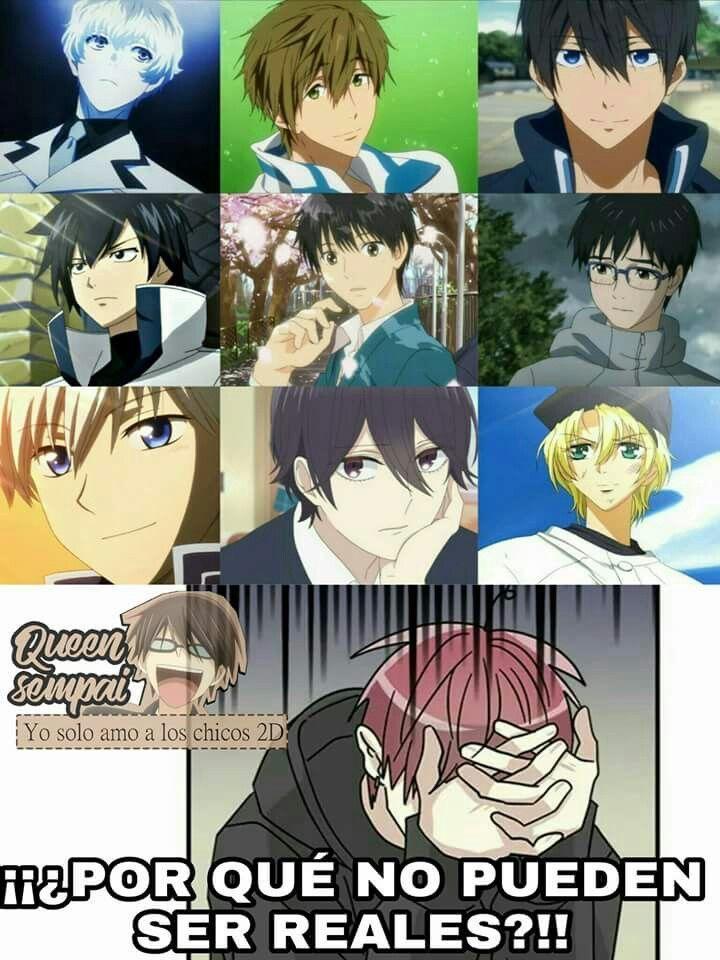 Memes anime Meme de anime, Memes divertidos y Memes otakus