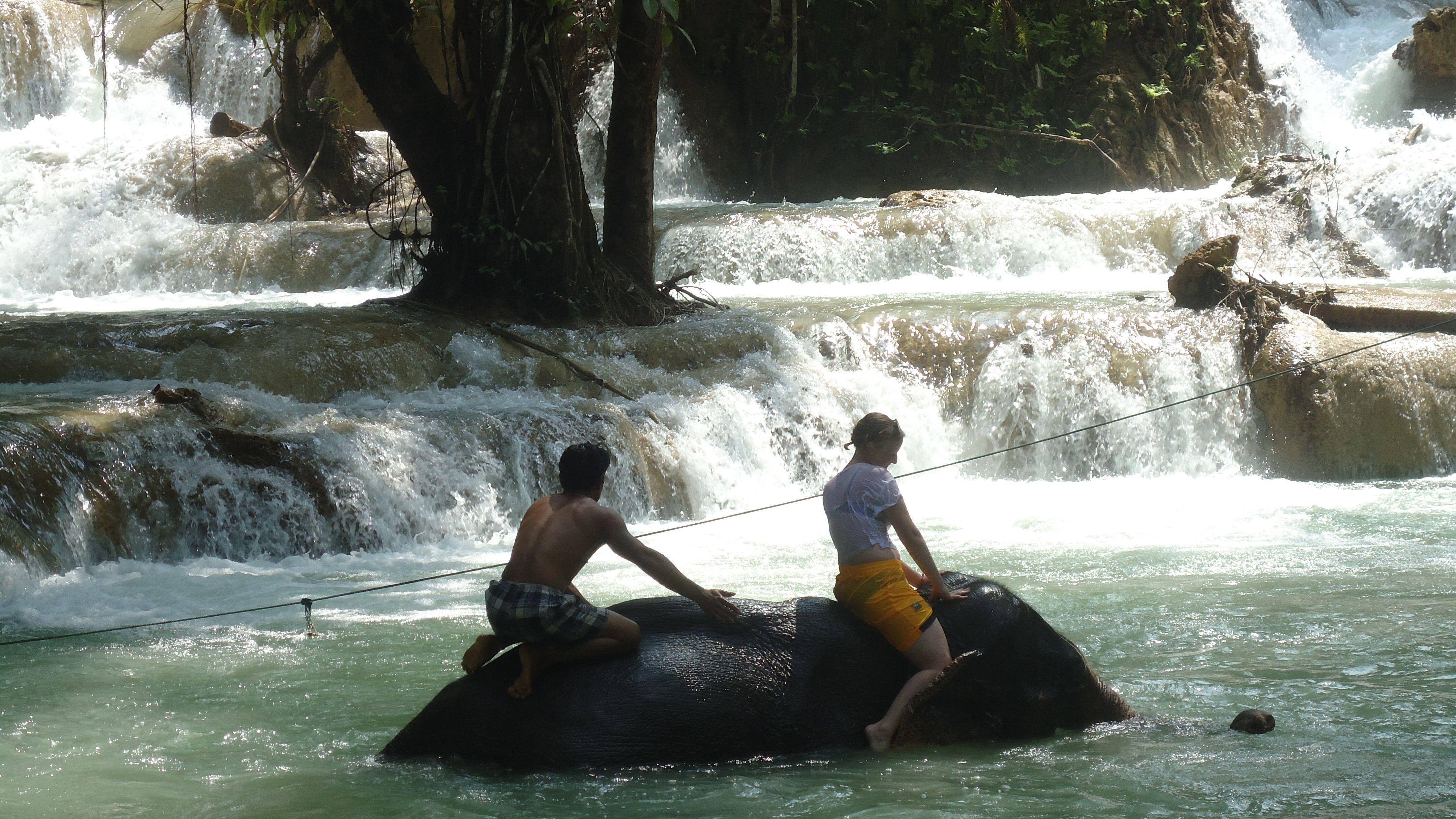 Sexy Woman riding bareback barefoot on an Elephant in the Jungle/Sexy Frau reitet ohne Sattel barfuß auf einem Elefant im Dschungel .