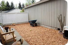 No Mud Dog Yard Cedar Chips 8 In Deep Dog Friendly Backyard