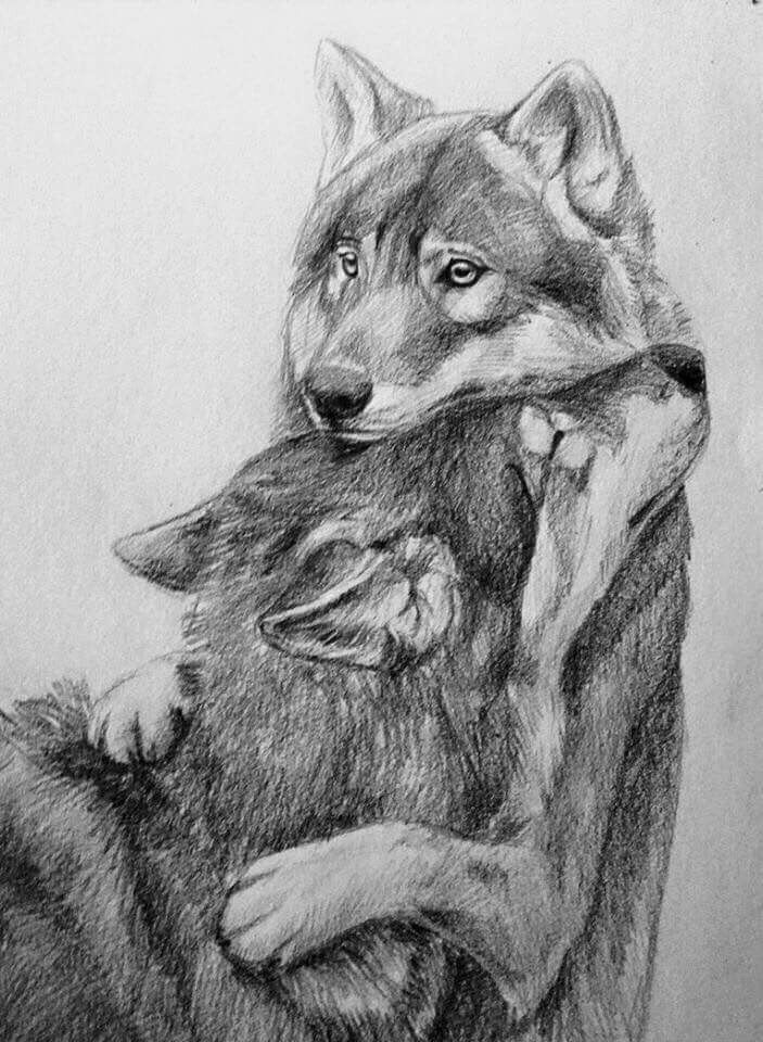 Protection Inspiration Pinterest Dessin Realiste Dessin And