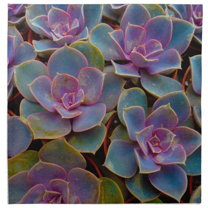 Purple Blue Green Succulent Cactus Plant Cloth Napkin   Zazzle.com