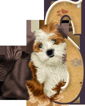 Oh my Alfabetos!: Alfabeto con lindo perrito.