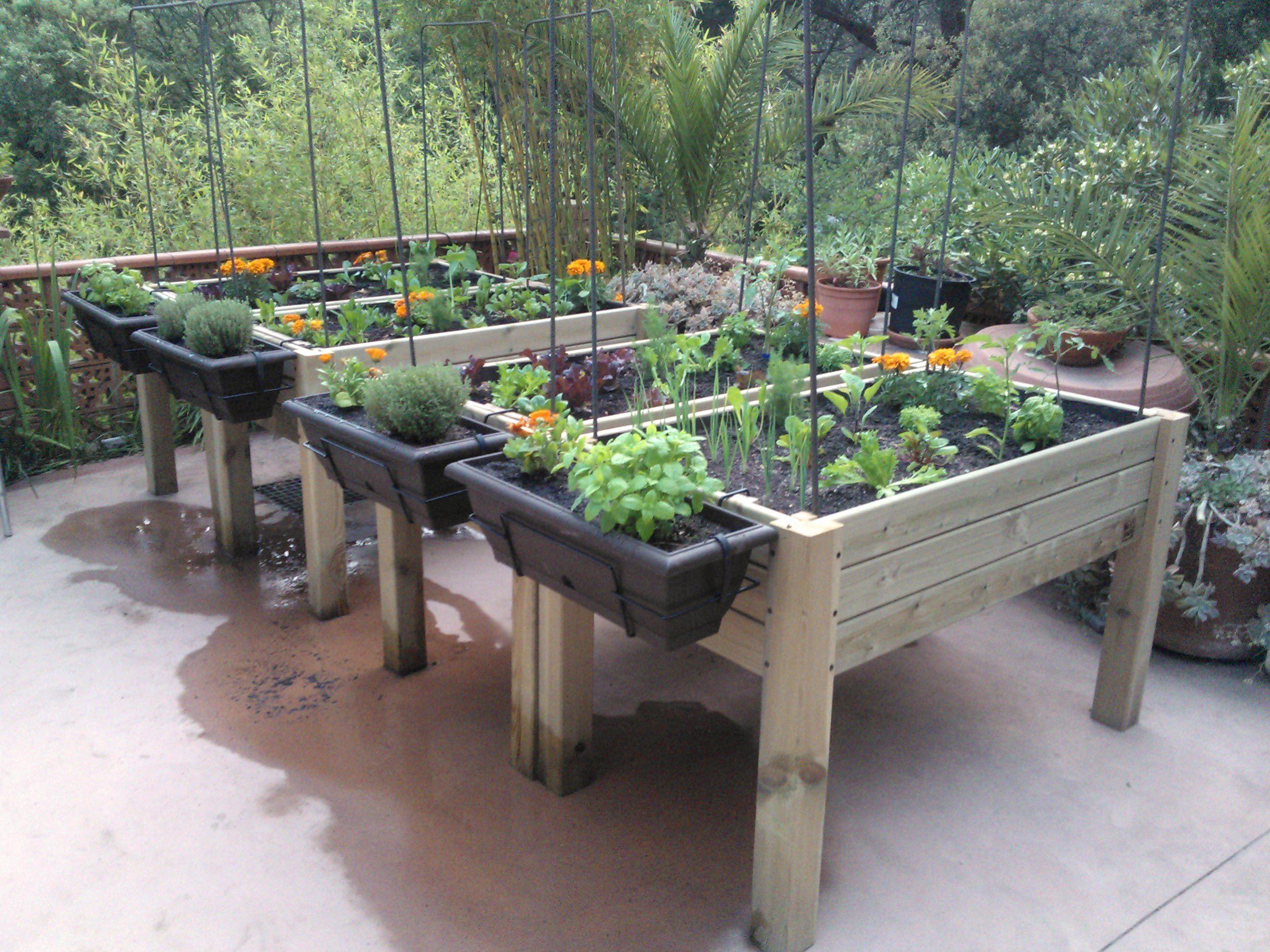 Mesa cultivo kit 122x62x80 green business pinterest for Mesas de cultivo urbano