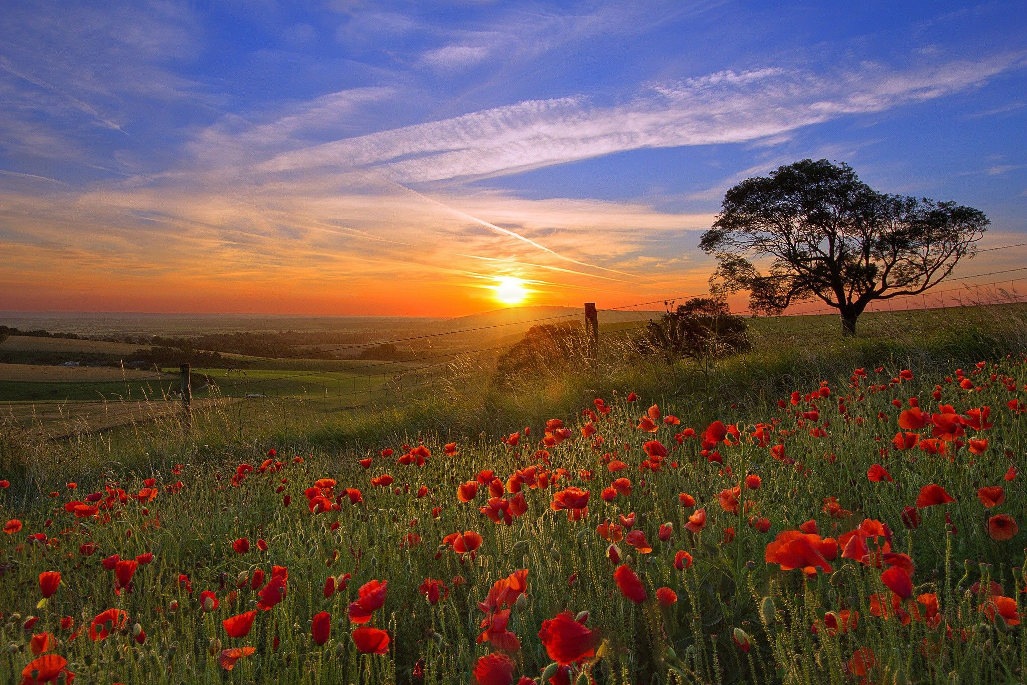 Fond ecran hd nature paysage soleil couchant sur prairie for Fond ecran gratuit ete