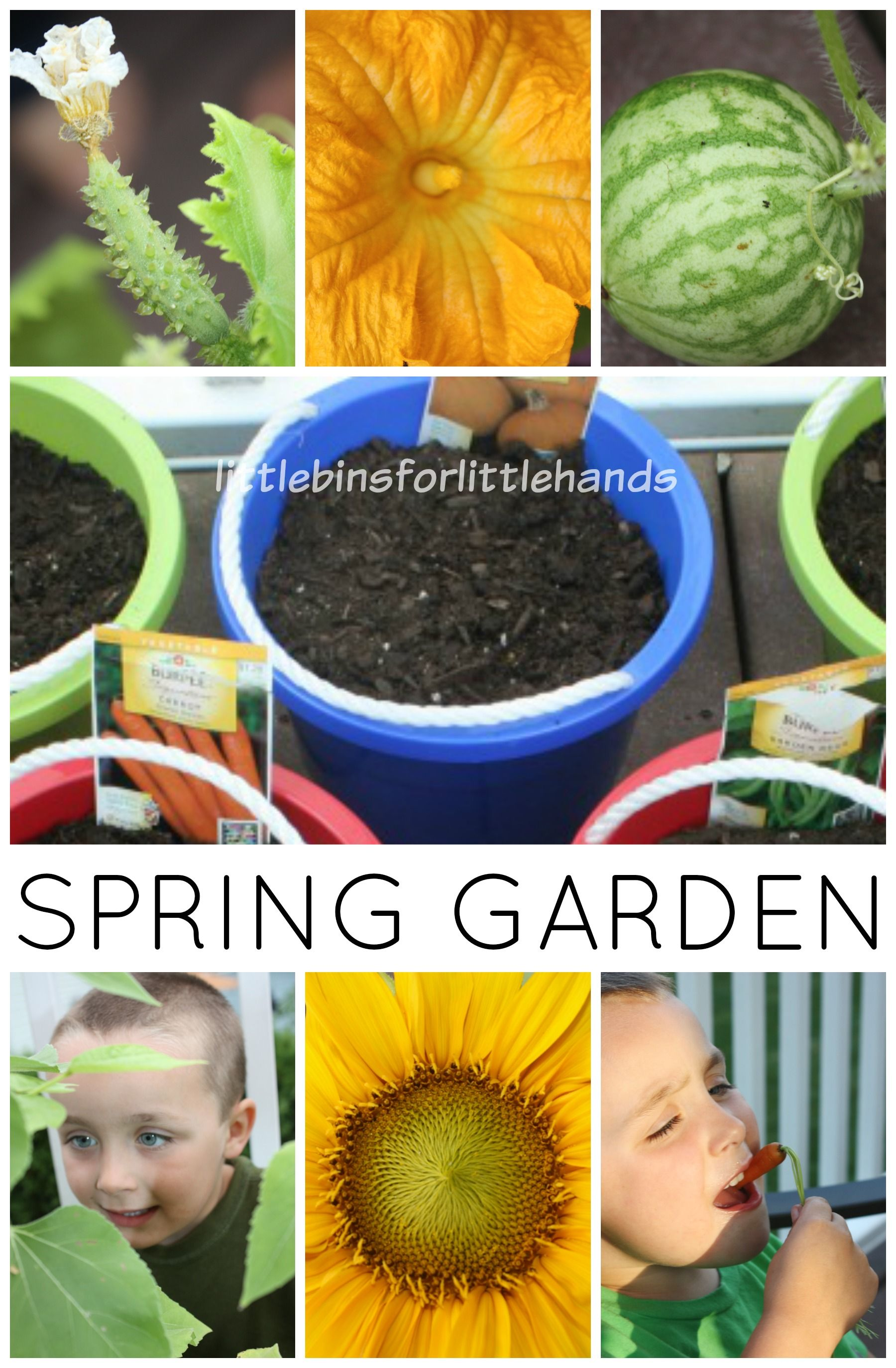 Spring Garden Activity with The Surprise Garden Book. Fun and easy Spring garden planting activity that you can do almost anywhere you can put a bucket!