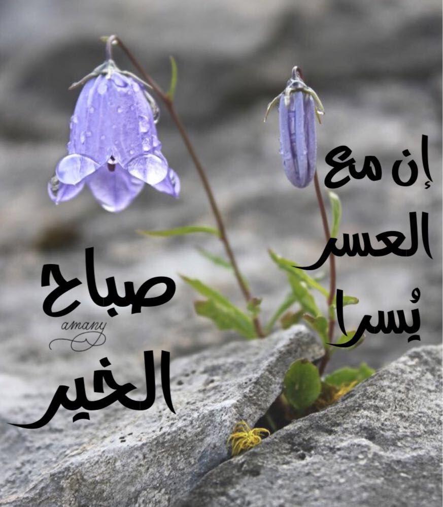 صباح الخير Good Morning Greetings Good Morning Images Good Morning Post