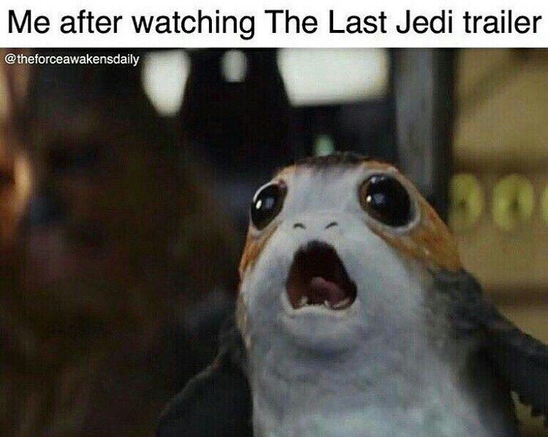 Guess I M A Porg Star Wars Memes Star Wars Humor Rogue One Star Wars