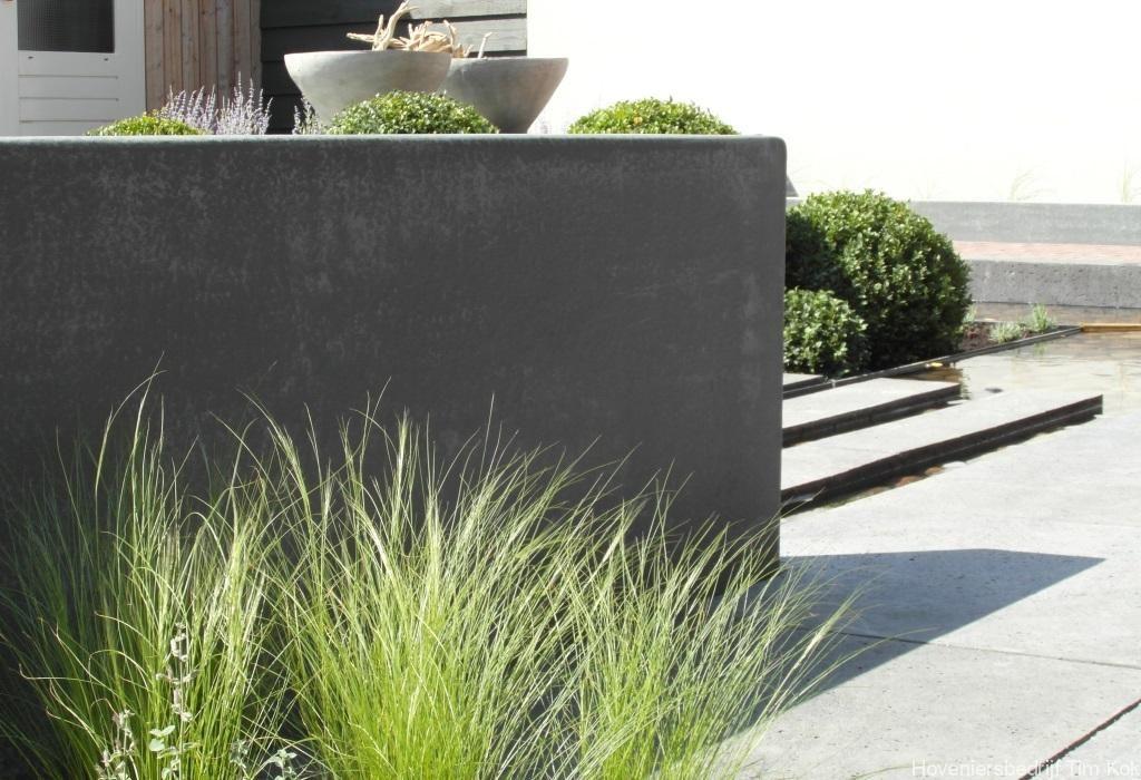 Siergrassen stapelementen in vijver grote tegels for Tuinarchitect modern