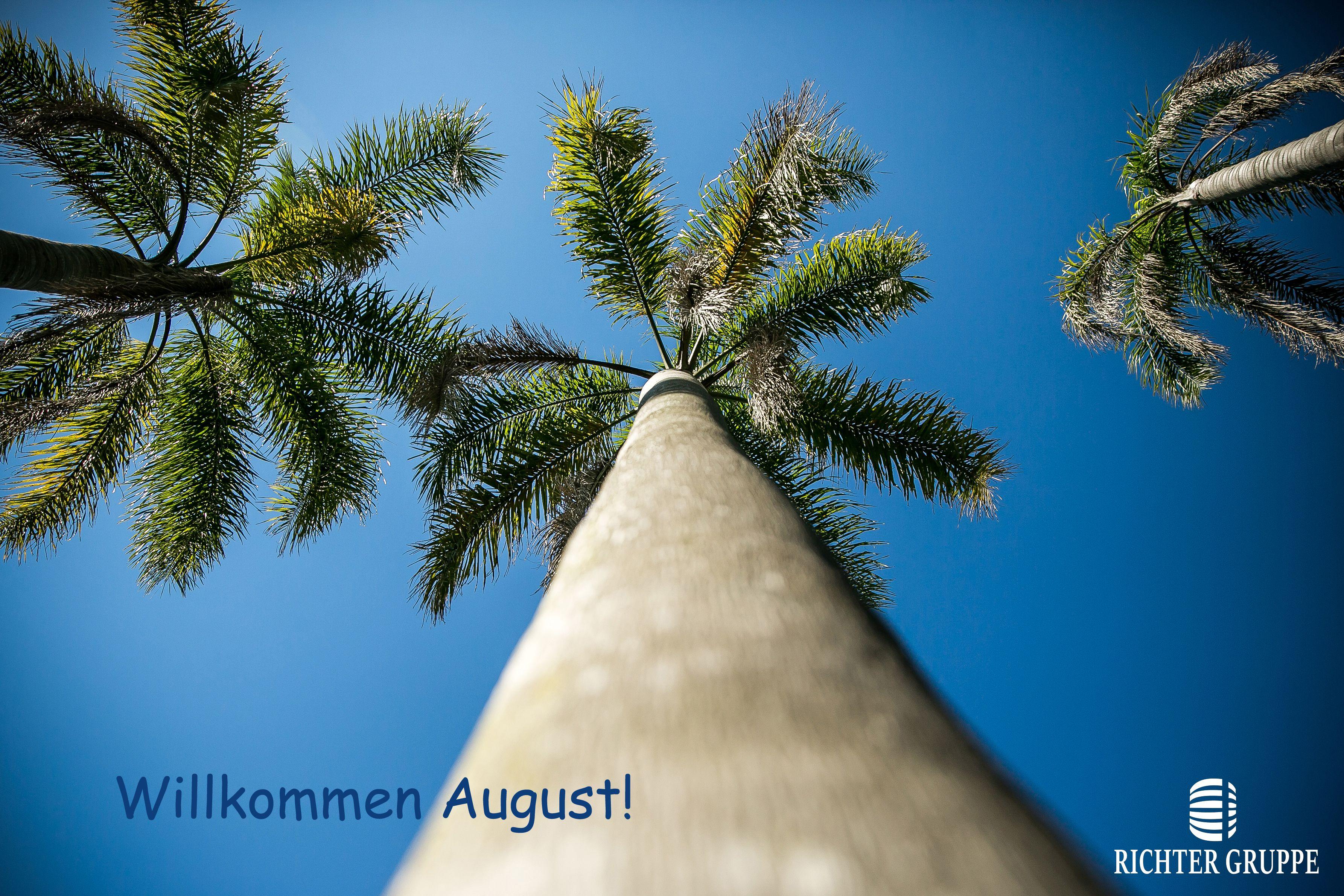 Willkommen August!! #venhainvestir