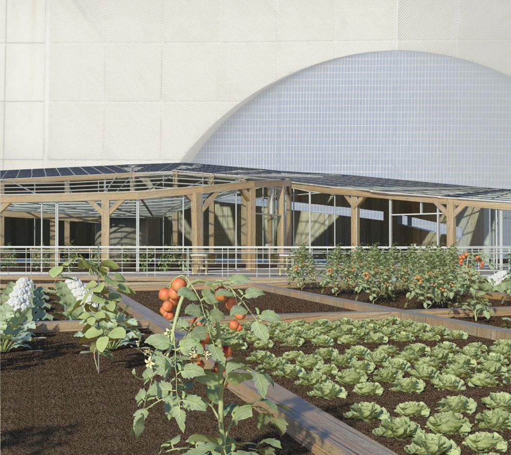 Harlem Piers Farm in New York by ShortList_0 Design Group (designed using  Autodesk Revit)   Urban farming, Farm, Greenhouse