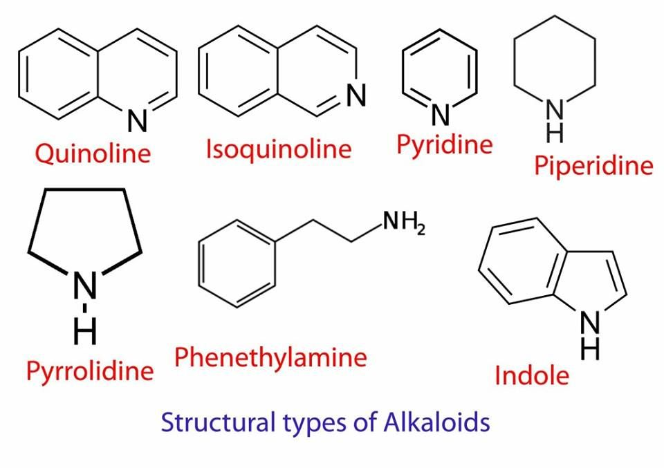 Structural Types Of Alkaloids Chemistry Phenethylamine Science