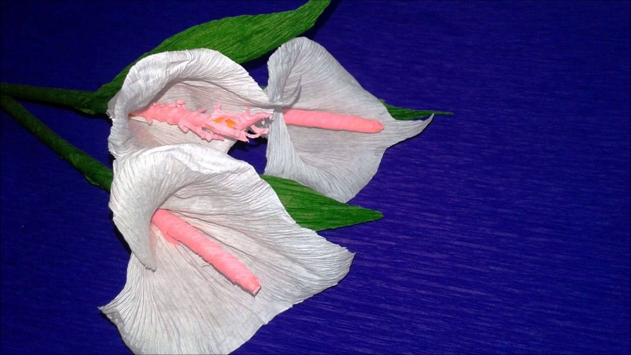 How to make calla lily flower from crepe paper craft tutorial easy how to make calla lily flower from crepe paper craft tutorial easy flowers making izmirmasajfo