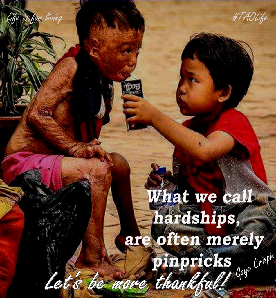 Quotes About Hardships In Life Poster What We Call Hardships Are Often Merely Pinprickslet's