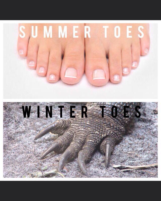 Summer Toes Winter Toes Nail Memes Pedicure Pedicure Nails