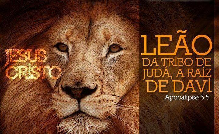 Resultado de imagem para Leão de Judá