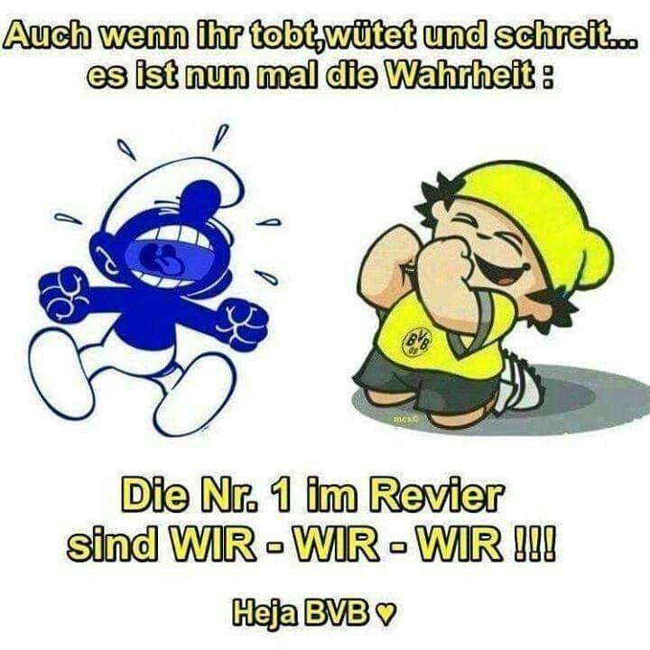 Schalke Witzige Bilder