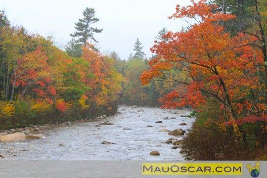 Outono na Kancagamus Highway    #NewHampshire #NovaInglaterra #NewEngland #WhiteMountains #EUA #USA #EstadosUnidos #Viagem #Kancamagus #MauOscar #Outono #Fall #Foliage