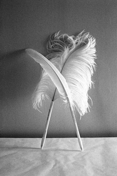 feather pen | maison martin margiela