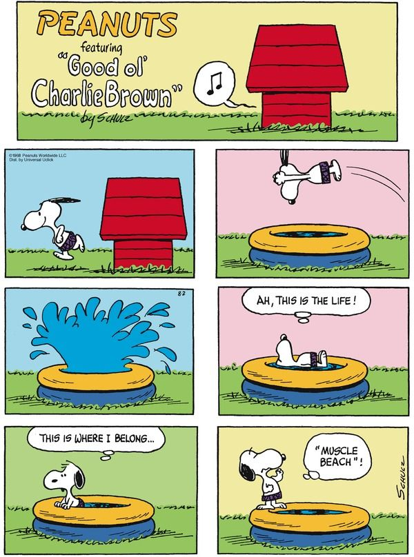 Peanuts Arcamax Publishing Urlaub Snoopy Comics Snoopy