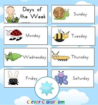 Mini Beasts With Images Clever Classroom Minibeasts