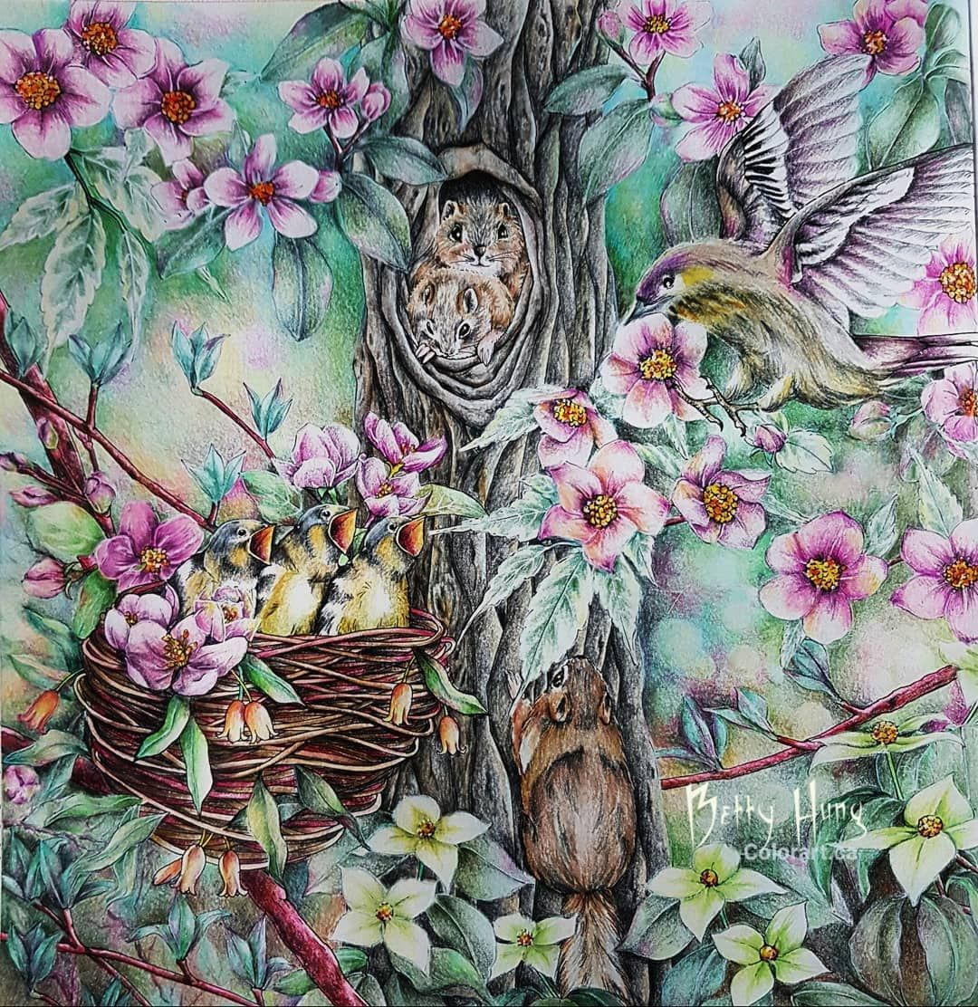 Color Art By Betty Hung On Instagram Menuet De Bonheur By Kanoko Egusa Done With Faber Castell Polychromos Colorful Art Forest Coloring Book Color Pencil Art