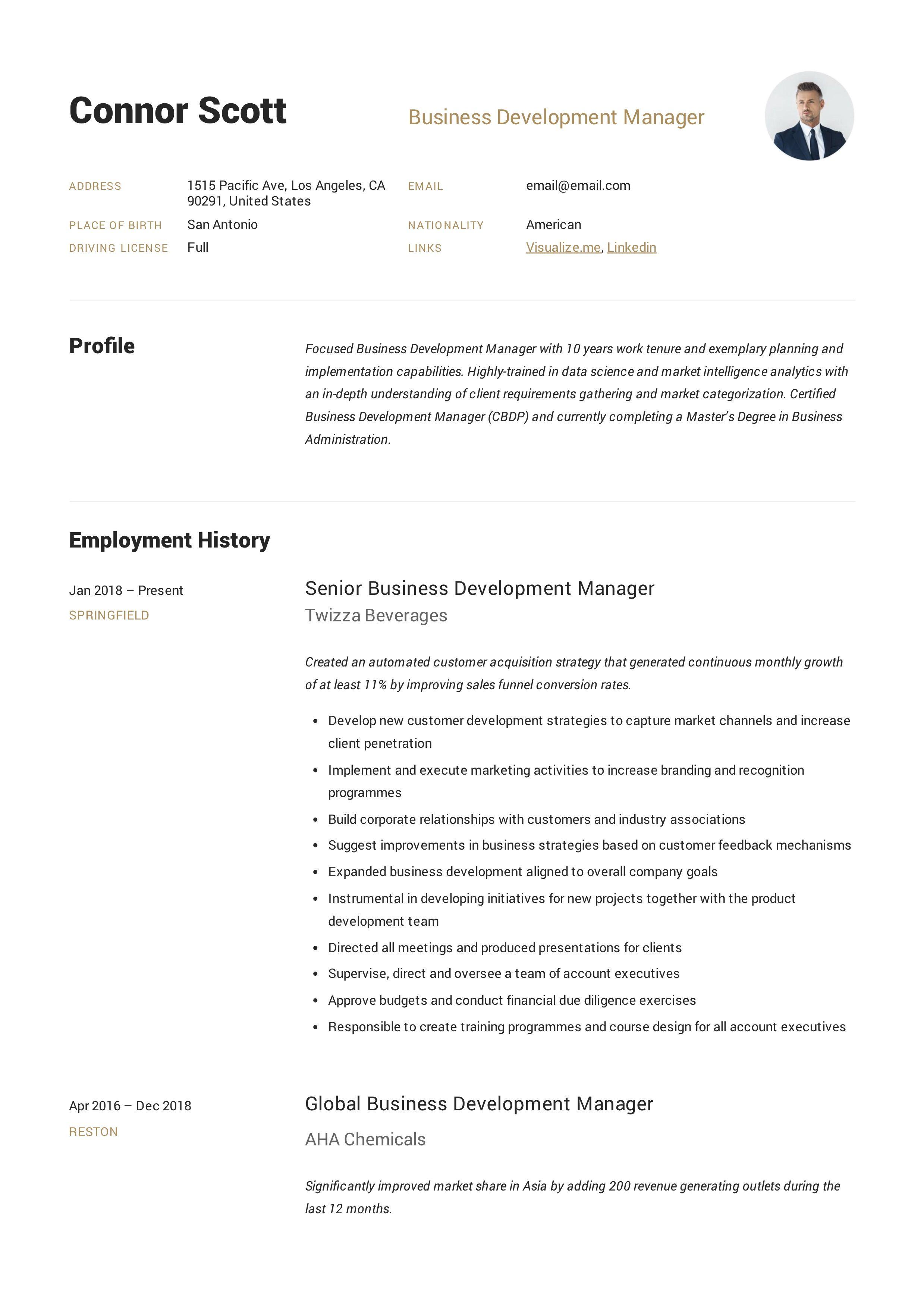Business development manager resume sample manager
