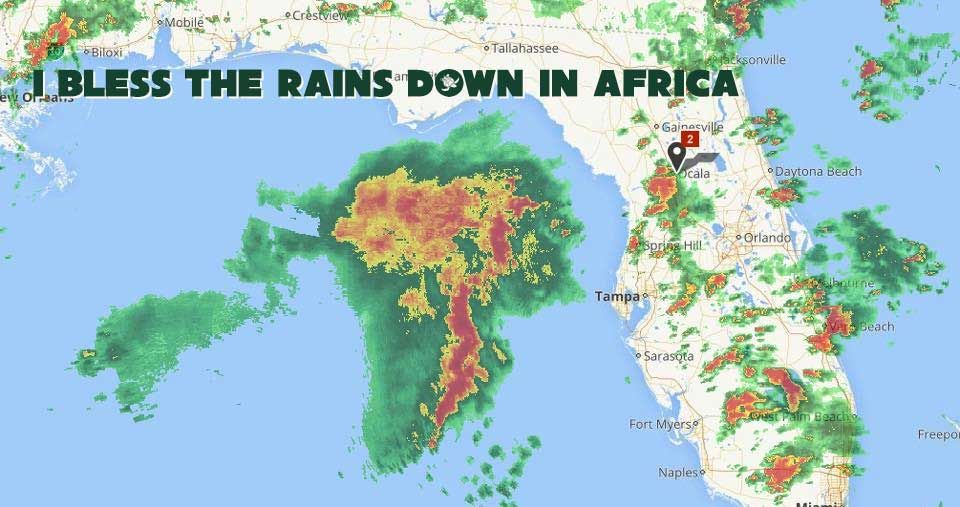 Lyric i bless the rains down in africa lyrics : I bless the rains down in Africa | Florida meme, Meme and Memes