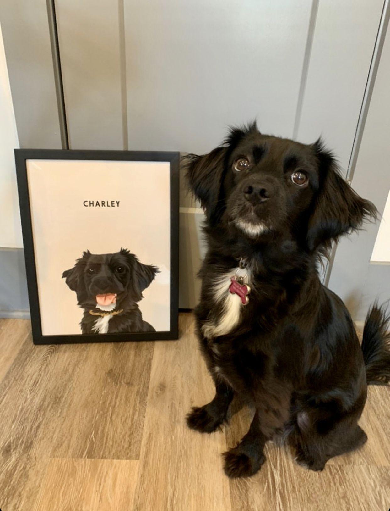 Custom Pet Portraits (Framed) Custom dog portraits, Pet