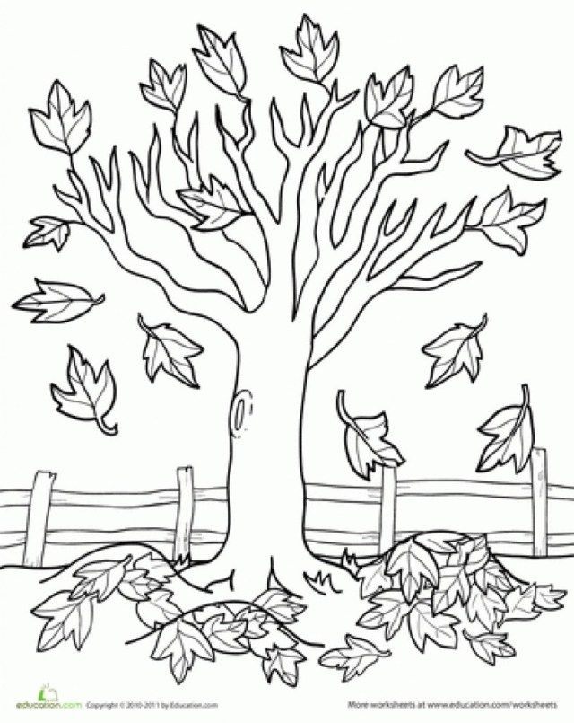 27 Amazing Picture Of Fall Tree Coloring Pages Albanysinsanity Com Fall Coloring Pages Fall Coloring Sheets Tree Coloring Page
