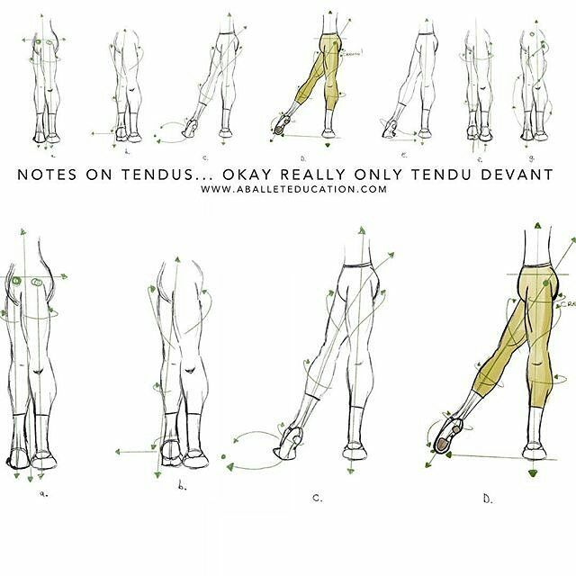new post  notes on tendus  tendu  aballeteducation  ballet  ballett  balletblog  ballerina