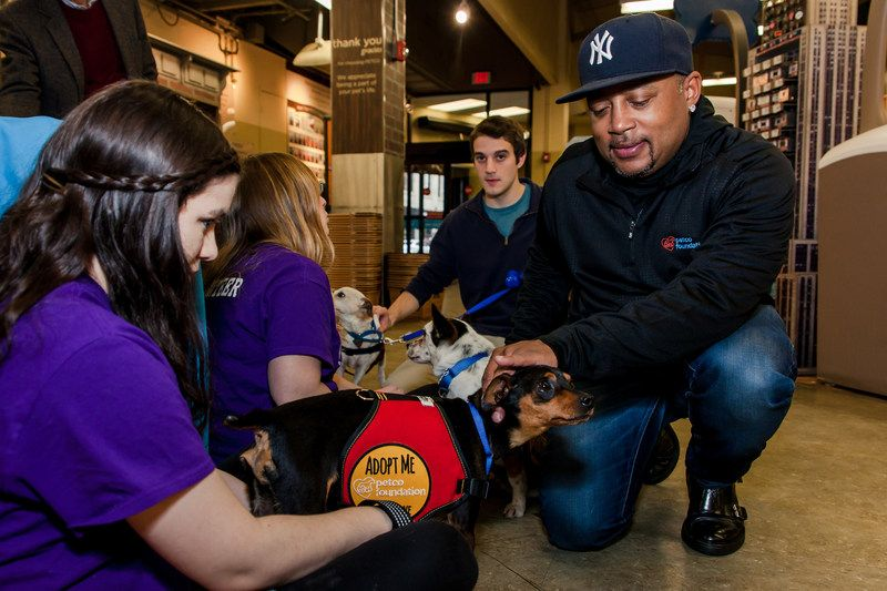 The Petco Foundation, a leader and valued partner in