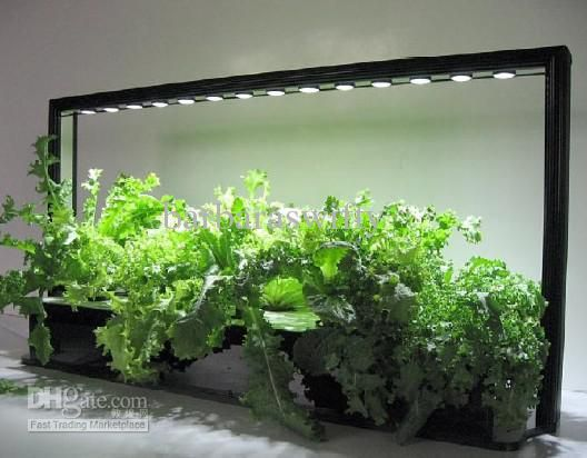 grow light garden Google sk hage og planter Pinterest