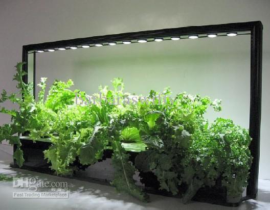 Creative Indoor Garden Décor Wholesale Parus Led Grow 640 x 480
