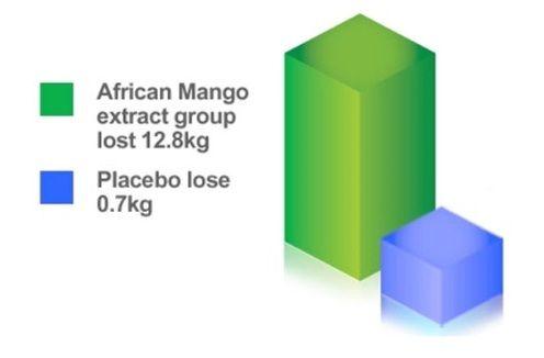 Diet Health Saffron Diet Gnc Satiereal Saffron Extract Dr Oz