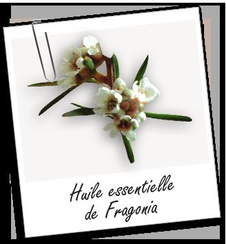 Huile essentielle de Fragonia   Essentiel, Huile et Aromathérapie 8a5bdd20c4e