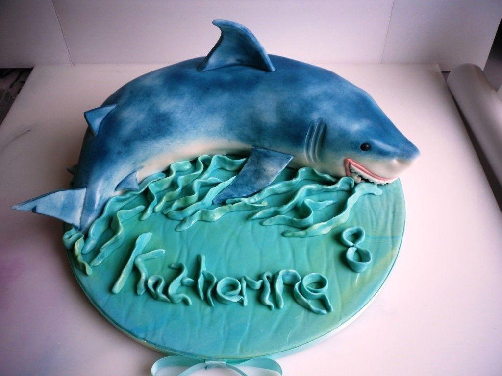 Shark Cakes Designs Ideas Best Shark Cake Photos