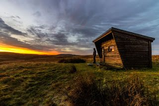 Casas, minicasas y cabañas