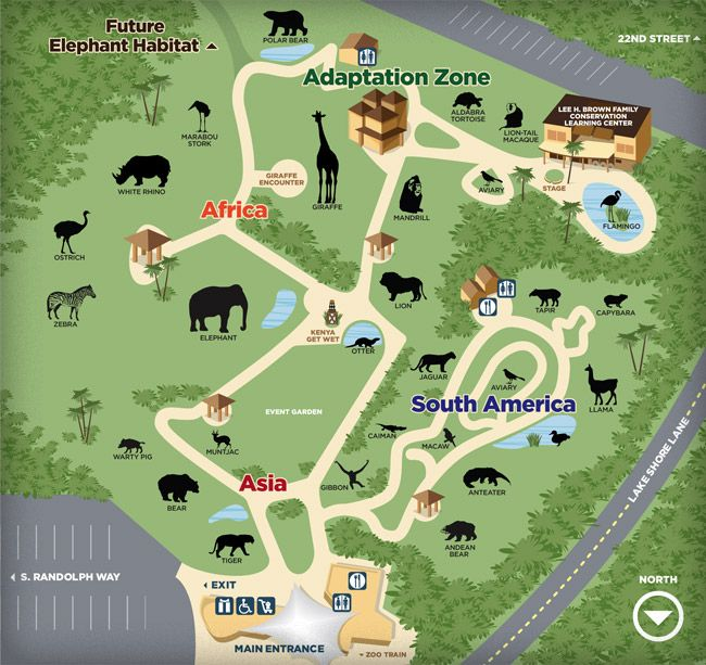 Zoo Map Image By Annabelle Casillas On Activities For Kids Zoo