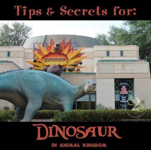 Dinosaur in Animal Kingdom #animalkingdom