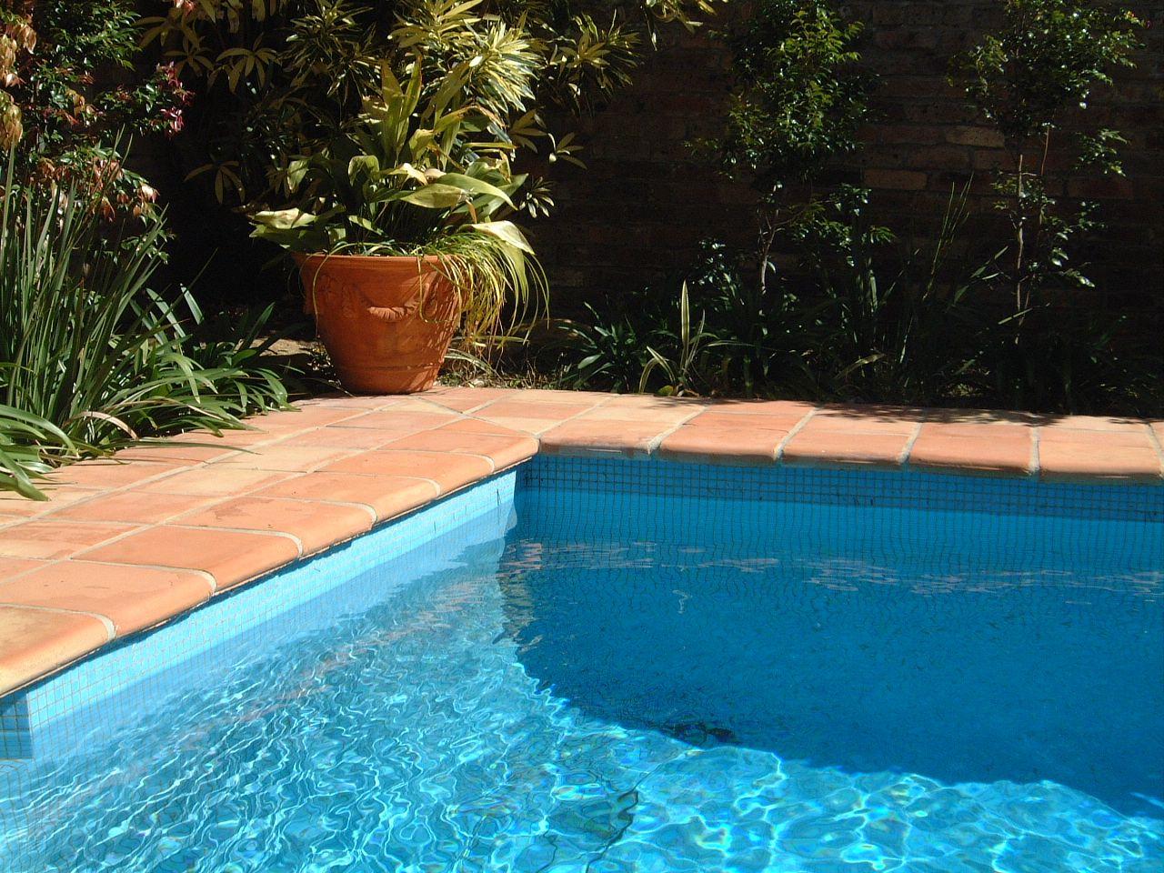 Terracotta Swimming pool inspiration Terracotta, Pool paving