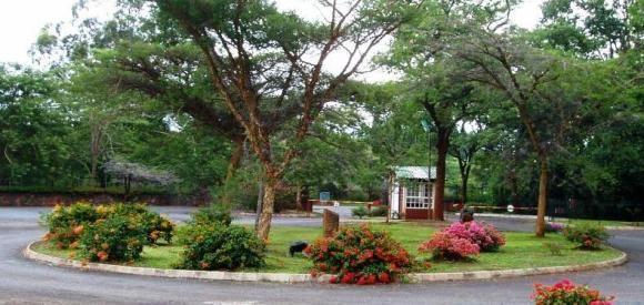 Foyer Entrance Zimbabwe : National botanic garden zimbabwe beautiful africa