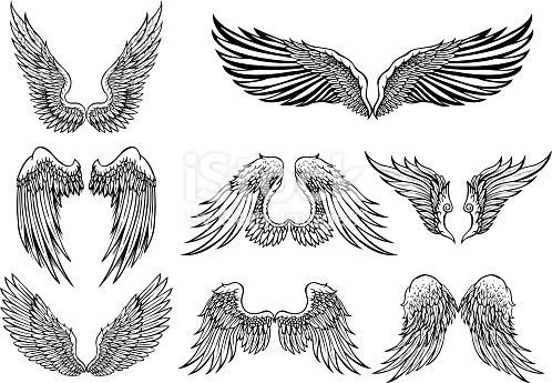 Set of 8 wings graphic elements  Download the Chicken Wings vector graphic now And browse the iStock library of royaltyfree vector