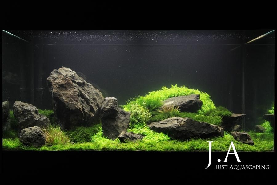 enrockment just aquascaping aquascaping aquarium aquascape aquarium und aquarien