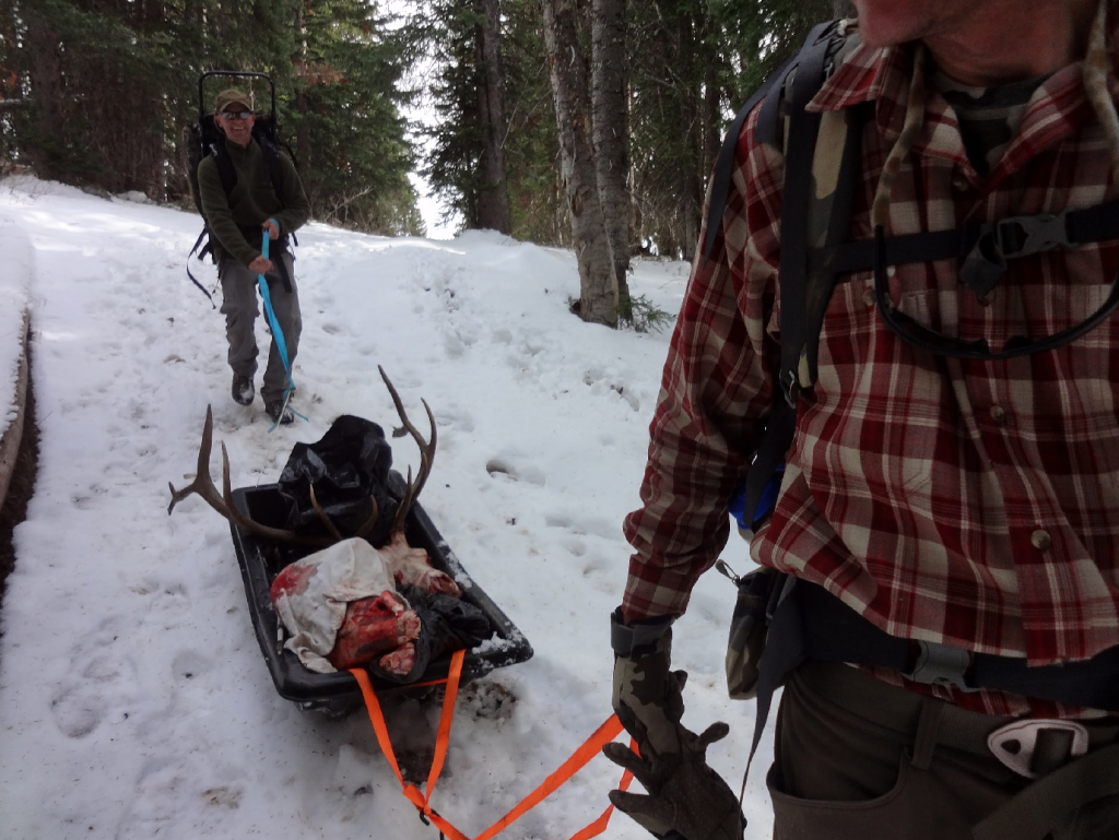 how to use a sled