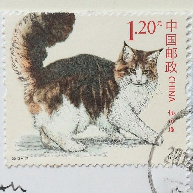 Awesome Chinese Cat Stamp With Images Postage Stamp Art Cat