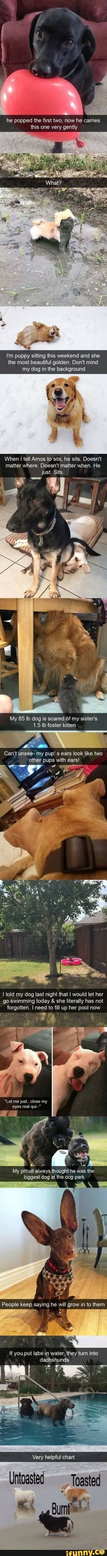 He popped the first two, now he carries this one very gently - iFunny :)
